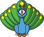 google peacock